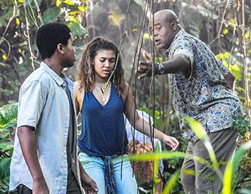 Hawaii 5-0 S06E19 Malama Ka Po'e