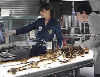 Bones S06E07 Chocolat show
