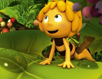 Maya l'abeille S01E48 La nuit des géants