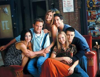 Friends S02E09 Celui qui cassait les radiateurs