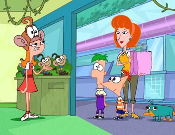 Phineas et Ferb S01E05 La rage de vaincre. - Candice, princesse maudite