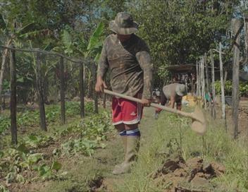 Nous, gens de la terre Guyane, de la terre jusqu'au ciel
