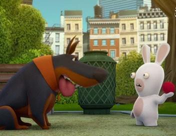 Les lapins crétins : invasion S01E55 Toutou lapin