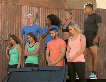 MTV Fear Factor Episode 5 (Emission) • Programme TV & Replay