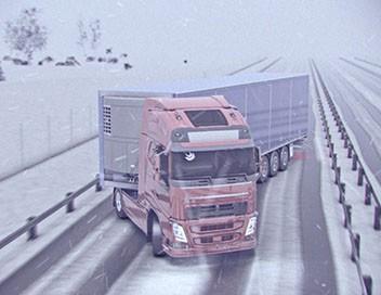 Danger de mort E13 Camion en crise