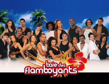 Baie des flamboyants Tourments