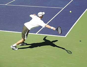 Tennis Tournoi ATP de Winston-Salem 2019