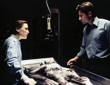 X-Files : Aux frontières du réel S03E03 Coup de foudre