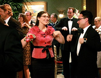 The Big Bang Theory S05E03 L'extrapolation de l'aine froissée