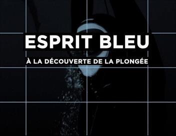 Esprit bleu Fédération française de parachutisme