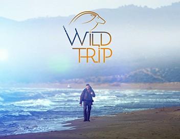 Wild Trips S01E03 Russie