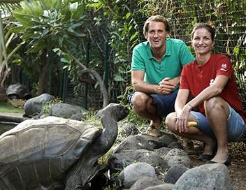 Echappées belles La Réunion, terre d'aventure