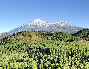 Les Canaries, terres de volcans