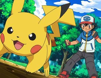 Pokémon S14E23 Un combat pour l'amour des types insecte
