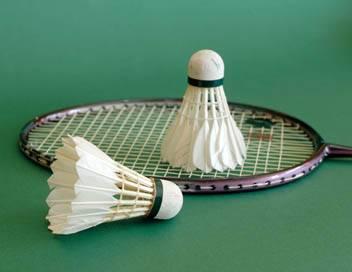 Badminton World Tour Super 500 2018