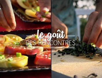 Le goût des rencontres Chaudrée de seiches sur l'île d'Oléron