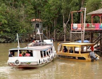 Echappées belles E25 Brésil, aux portes de l'Amazonie