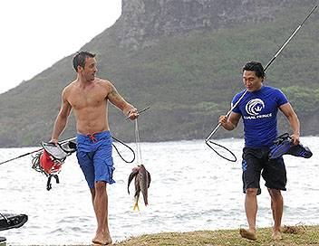 Hawaii 5-0 S01E11 Palekaiko