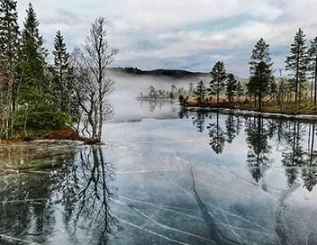 Merveilles nordiques Les fjords