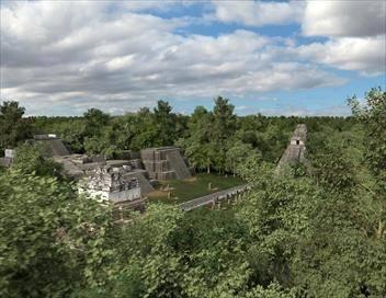 Tikal, la cité Maya disparue