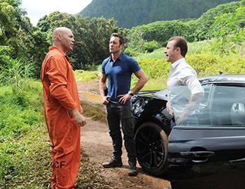 Hawaii 5-0 S06E02 Lehu a Lehu