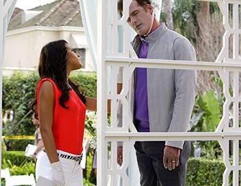 Les experts : Miami S07E17 L'espion qui les aimait
