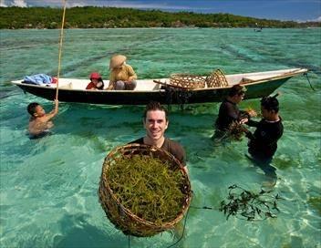 Investigatiôns Océan Indien, l'envers du décor