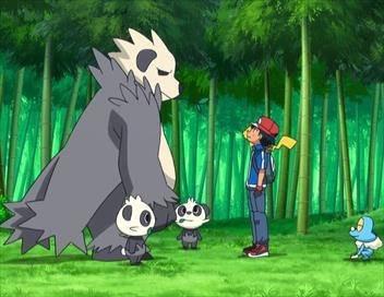 Pokémon : Nous adorons Pikachu et Evoli !