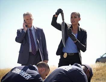 Major Crimes S05E03 Affaires étrangères