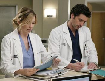 Grey's Anatomy S04E15 A devenir fou