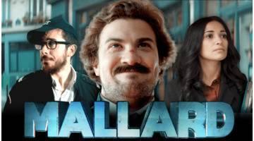 « Mallard » par Ludovik