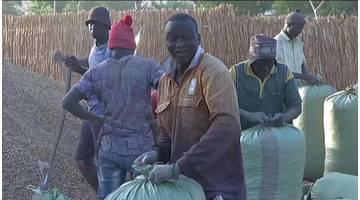 La BOAD investit dans la filière arachide au Sénégal