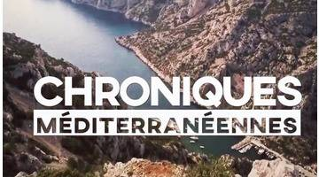 Nature : Port-Cros