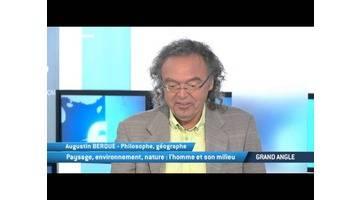 """TV5MONDE : """"Milieu"""" s'intéresse au rapport homme/nature au Japon"""