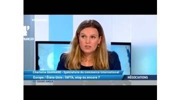Europe / États-Unis : TAFTA, stop ou encore ?