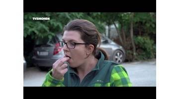 Intégrale Épicerie fine : Menthe et raisin muscat du Comtat Venaissin