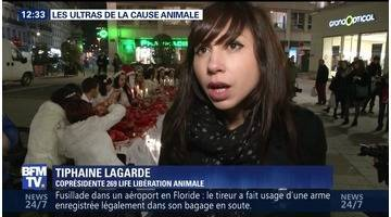 Les ultras de la cause animale