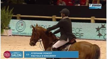 Salon du cheval 2016 epreuve Pro 3 Grand Prix TOP OF CREIF