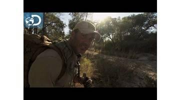 Sous l'oeil d'une hyène : Lone Target