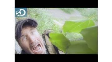 Course poursuite en forêt polonaise : Lone Target