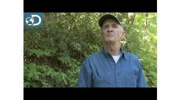 Les histoires de Jim Tom : Alcool de contrebande