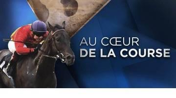 Replay - Au coeur de la course du 8 décembre 2016 - Hippodrome de Vincenne