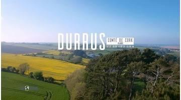 Irlande - Le Durrus cheese