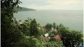 Le pays du giroflier (Ambon, Moluques, Indonésie)