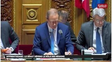 Best of avenir professionnel - Les matins du Sénat (28/07/2018)
